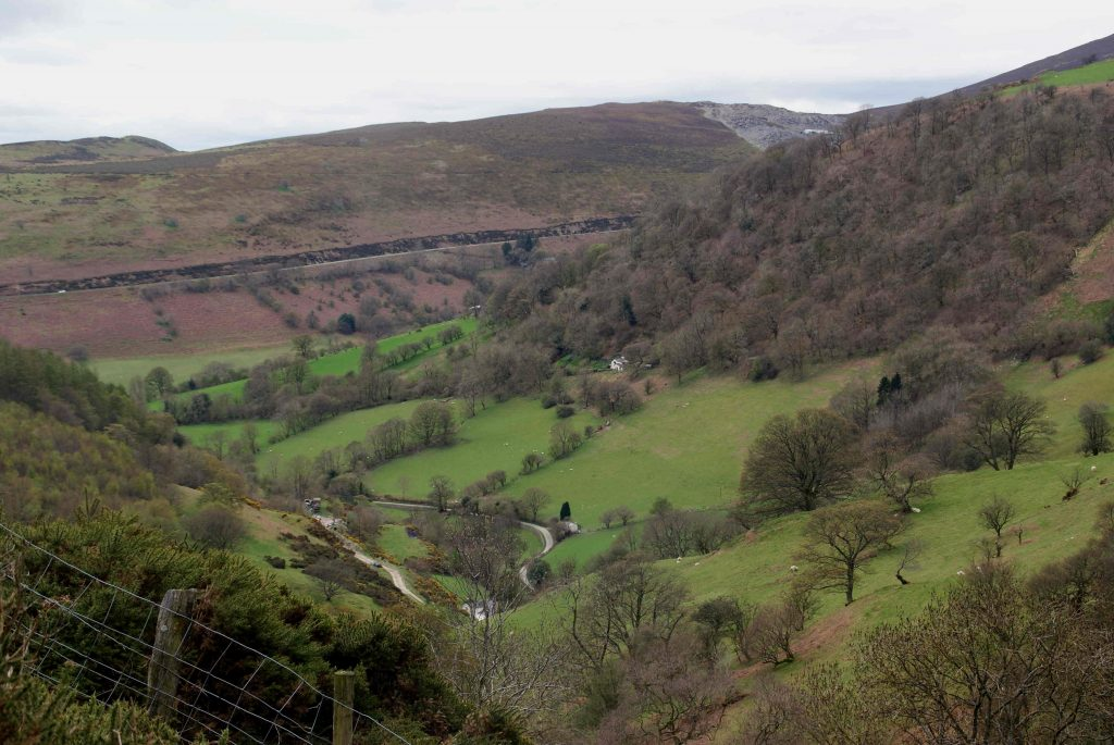 Clwydian Way view