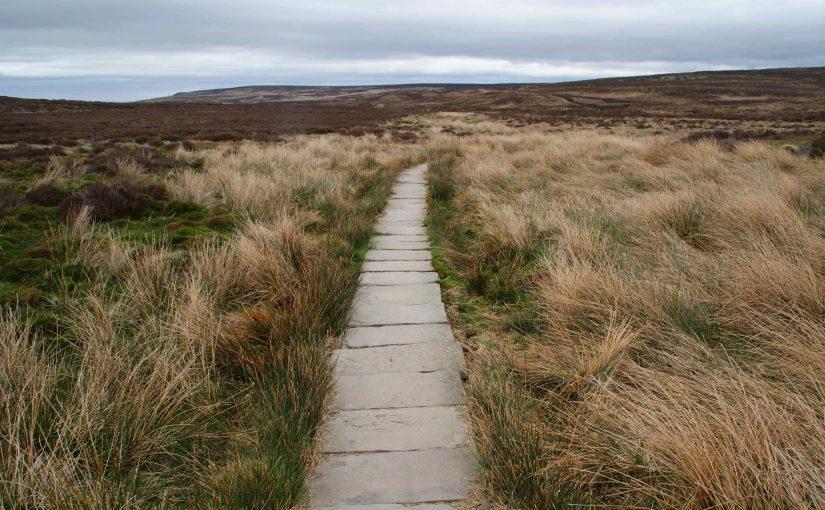 Offa's Dyke Path Cyrn-y-Bairn