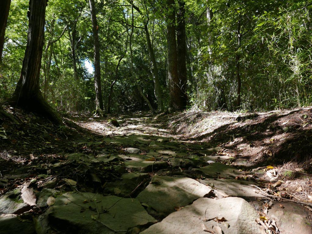Yusaka trail
