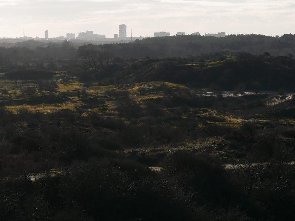 Uitzicht Kennemerduinen wandeling